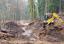 Budováním tůní podporují lázeňské lesy ochranu přírody